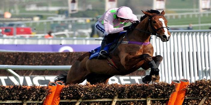 Stayers hurdle betting tips live betting odds cheltenham