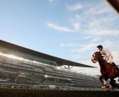 Horse Racing: Meydan/UAE horses to follow in 2020/21