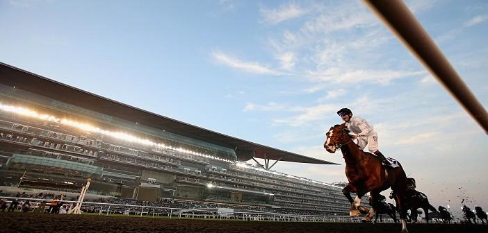 Horse Racing: Meydan/UAE horses to follow in 2019/20