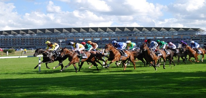 Horse Racing: The NAP, the lay and the each-way on Day 1 at Royal Ascot
