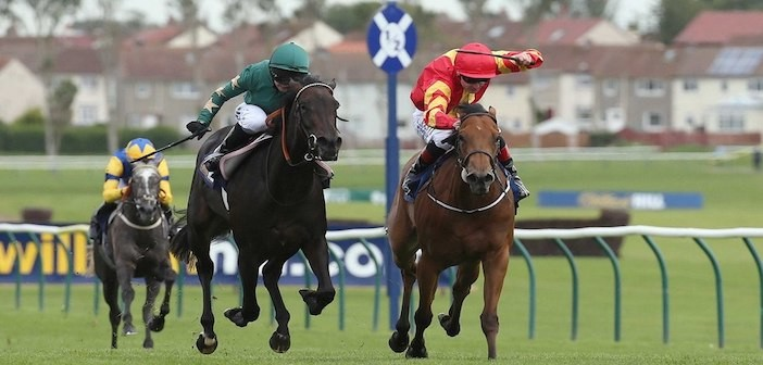 Only Mine - Curragh
