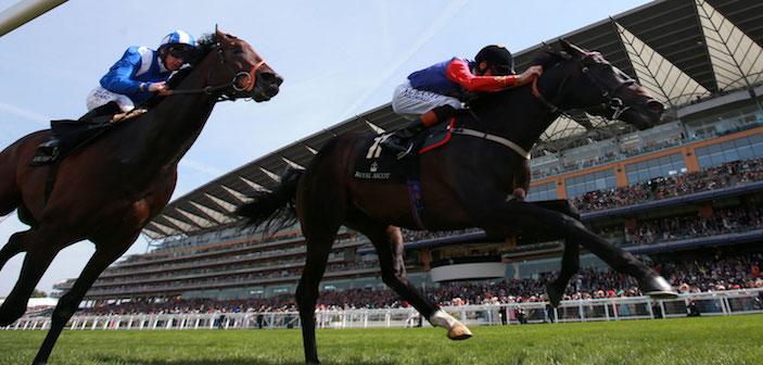 Ascot Horse Racing