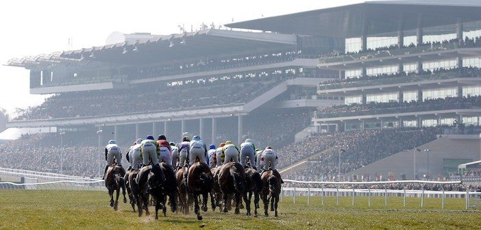 Cheltenham Tips: A win yankee to follow at the Festival